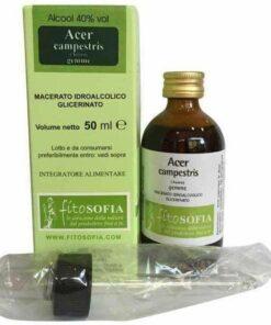 Glycerine macerate of Acer Campestris, Fitosofia