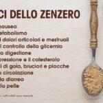 Zenzero: effetti benefici della radice